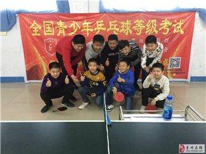 2019年刘红乒乓球培训暑假火热招生中