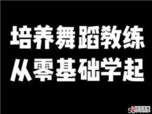 龙南和信丰那里有成人专业考证的舞蹈培训机构
