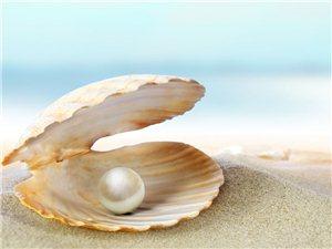 海南天然珍珠店