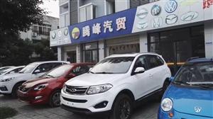 腾峰汽贸有限公司