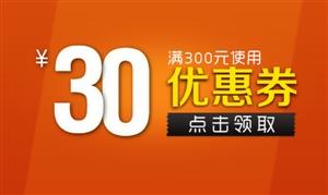 [舟曲县弘扬文化传媒有限公司]满300减30元优惠券