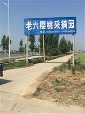 汤阴古贤镇老六樱桃园