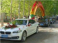 齐河本地专业婚车队