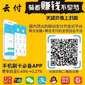 手机app  pos机