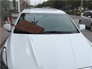 凯迪拉克前挡玻璃修复