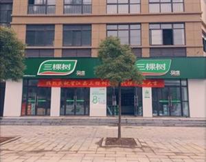 三棵树望江营销中心