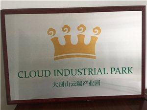 大别山云端产业园新方向科技有限公司