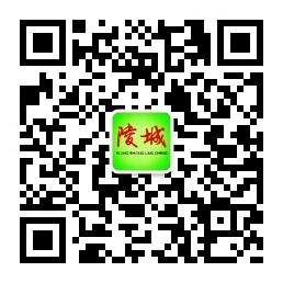 陵城网运营中心