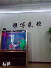 陕西雅博装饰(卡玛洛尚品吊顶)