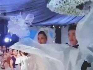 ##张馨予上海大婚