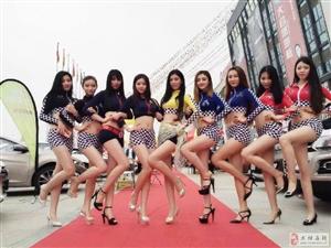 4月1日至4日大悟大型春季车展在财富广场盛大开展,美女车模,百款好车等你来!