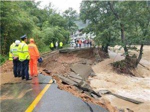 暴雨洪涝!陇南46万余人受灾,直接经济损失103682.24万元