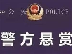 正安小雅发生?#40644;?#24694;?#22253;?#20214;,嫌疑人在逃,知情者请速与警方联系