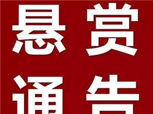 【�U散】�屹p公告!