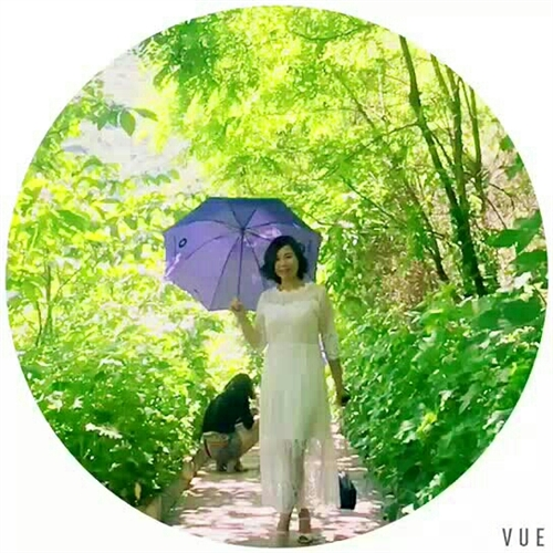 《紫伞@妩媚》