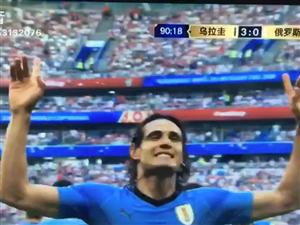 乌拉圭第三个入球
