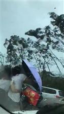 可怕的山竹,在广东的邻水老乡们不要抱侥幸心理出门做事!