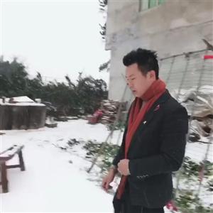 2019第一波狗粮已发,请查收