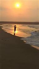 清水湾视频