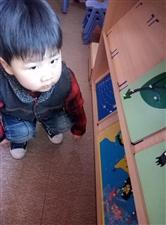 1149樊宁郎