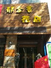 1037桦南郁金香花店
