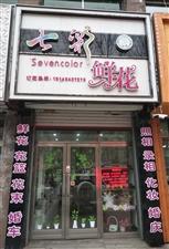 1135桦南七彩鲜花