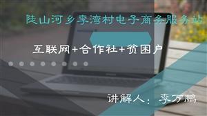03李湾村电子商务服务站