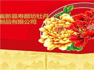06新县寿颜坊牡丹制品