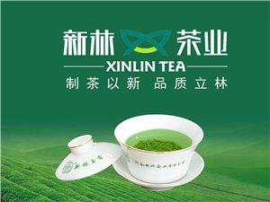 70新林抹茶研发项目