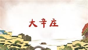 1034大辛庄