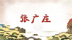 3008张广庄