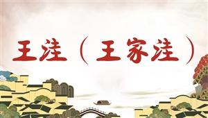 4037王洼(王家洼)