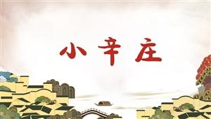 4043小辛庄