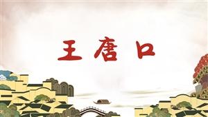 5005王唐口