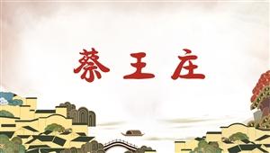 5016蔡王庄