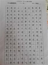 """2019""""外国语杯""""杞县学生作文大赛-027陈冰冰"""