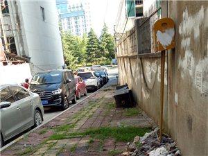 这条人行道还是老样子,别的路都翻修几次了,希望有关部门重视哈