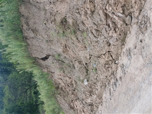 修村级公路给农民带来的损失