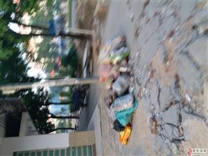 怡园五街路口长年堆放垃圾无人管理