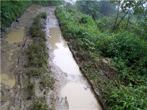 富顺这一条烂乡村道,让村民出行特别困难