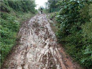 这就是东湖镇土门六组的水泥路