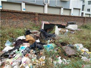 气愤!无素质,富达路防疫站旁边垃圾遍地!