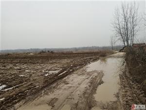 户胡镇上楼村堰头组村庄路段长年不修,村民苦不堪言