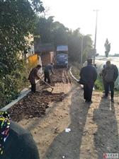 始建的乡村水泥路修到一半又不修了,路整得非烂!