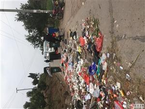 富顺乡村公路变成垃圾场!环保!真的环保吗?