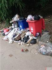 永年镇大坪村环境卫生无人管,垃圾遍地丢