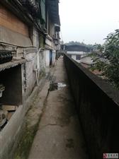 富顺东湖商城垃圾成堆,几天了无人管理!