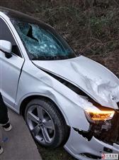 仁寿禾家一奥迪车与摩托车相撞,遭得有多凶!
