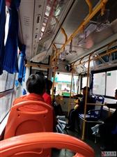 投诉公交司机