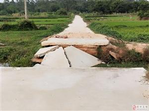 台风盯著化��池中水毁农田机耕桥
